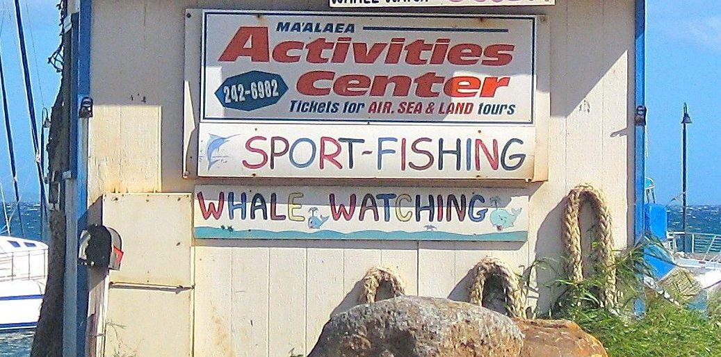 Maalaea Harbor Activities Hut