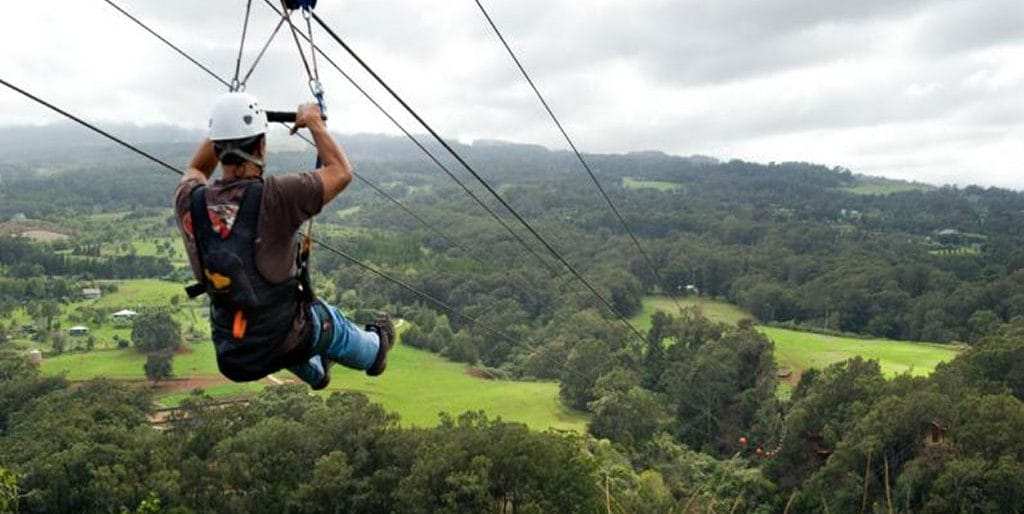 Permalink to: Zipline tours